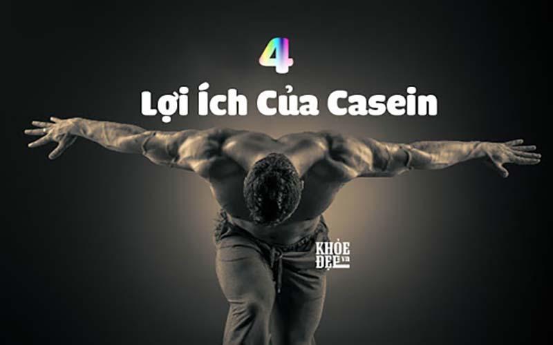 Casein Protein mang nhiều lợi ích cho người tập Gym