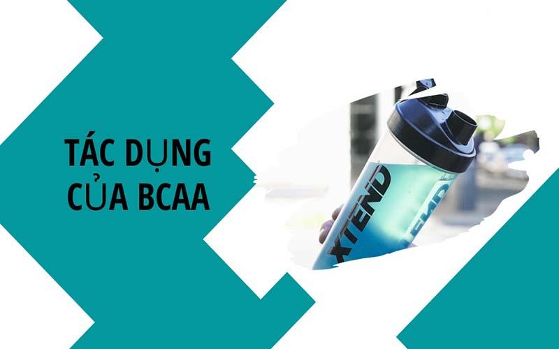 Công dụng chính của BCAA