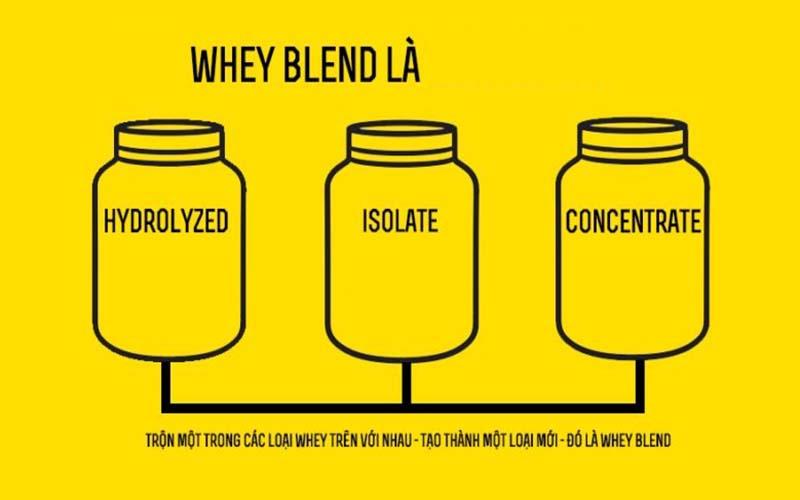 Whey Blend Protein là gì?