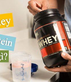 Thegioiwhey.com nơi cung cấp Whey Protein tin cậy của mọi gymer