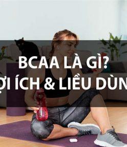 BCAAs là gì? BCAA Amino Acid phục hồi phát triển cơ bắp